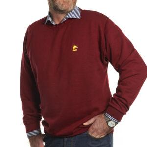 sweatshirt-maroon-2104